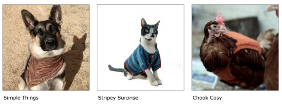 pets in knits